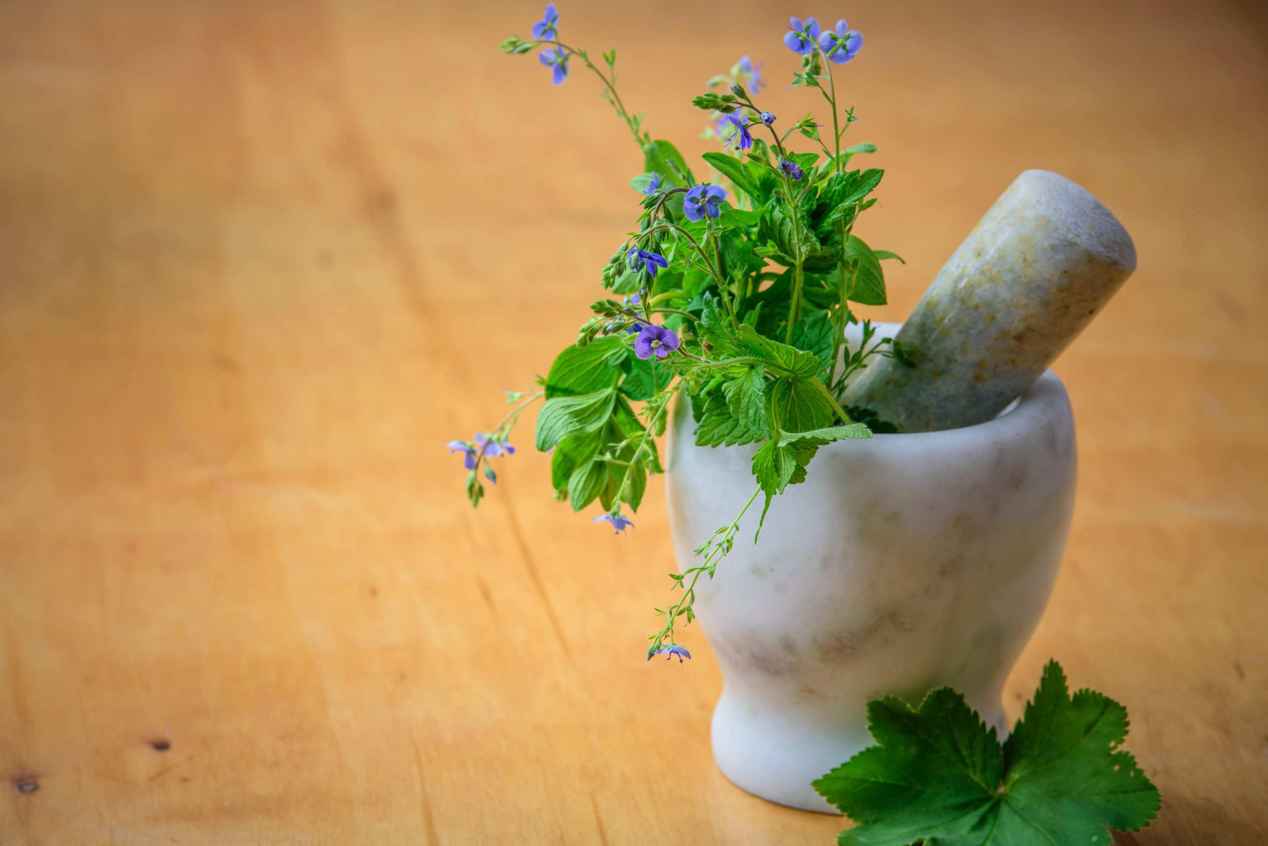 Traditional-Stress-Relieving-Herb-Remedies-Myth-or-Truth